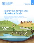 Improving Governance of Pastoral Lands