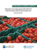 Pilot project on the implementation of the OECD-FAO Guidance for Responsible Agricultural Supply Chains : baseline report
