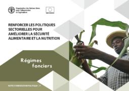 Renforcer les politiques sectorielles pour améliorer la sécurité alimentaire et la nutrition : note n°7 sur les régimes fonciers