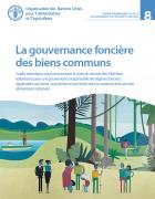 La gouvernance foncière des biens communs