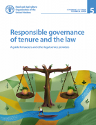 Responsible governance of tenure and the law : a guide for lawyers and other legal service providers