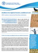 Améliorer les régimes fonciers, améliorer la vie 2016: mettre en œuvre les Directives volontaires