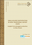 Smallholder Participation in Non-Traditional Export Crops. Insights from pineapple production in Côte d'Ivoire