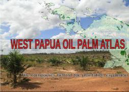 L'atlas de l'huile de palme en Papouasie occidentale : les entreprises derrière le boom des plantations d'huile de palme