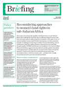Reconsidering approaches to women's land rights in sub-Saharan Africa