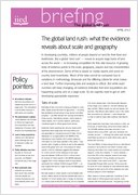 The global land rush: what the evidence reveals about scale and geography
