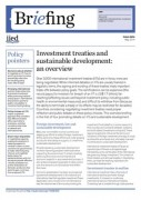 Investment treaties and sustainable development: an overview