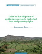 Guide to due diligence of agribusiness projects that affect land and property rights