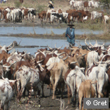 Agriculture familiale et pastoralisme