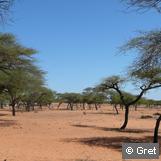Les terres communautaires  au Niger : définitions et statuts