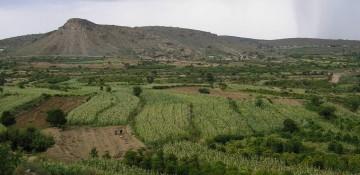 Publications du Comité sur les projets d'investissements agricoles à emprise foncière
