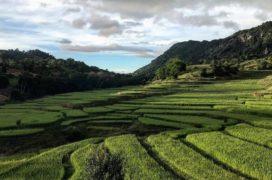 Trajectoires historiques et enjeux des politiques foncières : quelles possibilités de réforme en Birmanie ?