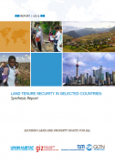 Land tenure security in selected countries : synthesis report