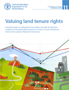 Valuing land tenure rights