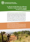 Le rôle de la FAO dans les réformes foncières visant à soutenir la mise en oeuvre de REDD+
