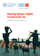 Realizing Women's Rights to Land in the Law : A guide for reporting on SDG Indicator 5.a.2