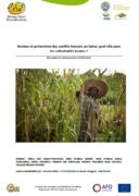 Gestion et prévention des conflits fonciers au Sahel, quel rôle pour les collectivités locales ?