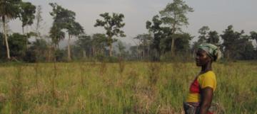 Chantier «structures agraires et accès des jeunes à la terre»: point d'étape