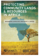 Protecting community lands & resources in Africa : grassroots advocates' strategies & lessons