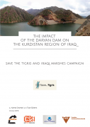 The impact of the Daryan Dam on the kurdistan region of Iraq