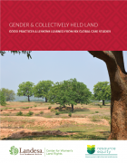 Gender & Collectively Held Land : Good Practices and Lessons Learned from Six Global Case Studies