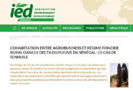 Cohabitation entre agrobusiness et régime foncier rural dans le Delta du Fleuve du Sénégal: le cas de Senhuile