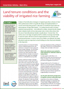 Land tenure conditions and the viability of irrigated rice farming