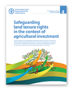 Safeguarding land tenure rights in the context of agricultural investment