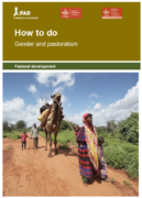 How to do gender and pastoralism ?