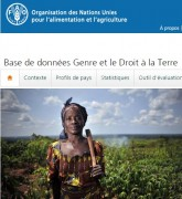 """Nouveau site web pour la base de données """"Genre et Droits fonciers"""" (FAO)"""