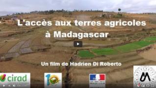 Vidéo : l'accès des jeunes au foncier agricole à Madagascar