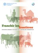 Rapport – Dispositions juridiques et politiques pour le pastoralisme transfrontalier