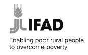 Fonds International pour le développement et l'Agriculture