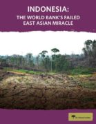 Indonesia : the world Bank's failed East Asian miracle